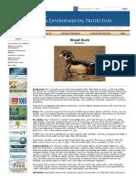 DEEP_ Wood Duck Fact Sheet