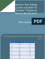 MK PI