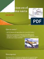 Transicion en El Programa Operativa en Sacta
