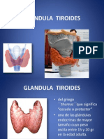 Glandula Tiroides..Conf
