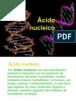 Ácido nucleico ppt