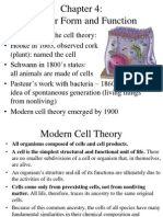 4 Cellular Form and Function