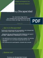 1- Infancia y Discapacidad- 2014.pdf