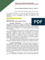 Ministério das Comunicações (2013) - Questões GP.doc