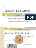 5. Sistema Respiratorio
