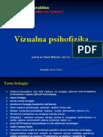 Vizualna psihofizika