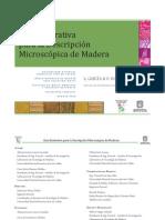 Catalogo Micro