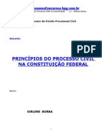 Pc-Principios Processo Civil
