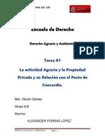 1-TAREA #1 Actividad Agraria y Propiedad Privada y Su Relación Con El Pacto de Concordía