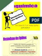 15bioquimicametabolismodelipideos-121129184933-phpapp02