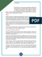 PETROLEO.docx