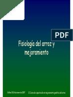 Fisiologia Del Arroz Juan