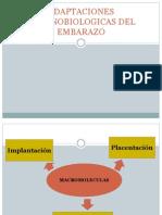1. Adaptaciones Inmunobiologicas Del Embarazo