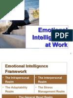Emotional Intelligence 20091112