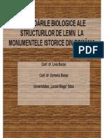 05 Livia Bucsa Degr Biologice Str Lemn
