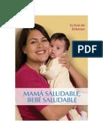 Su Guía Del Embarazo
