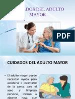 Cuidados Del Adulto Mayor