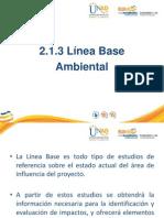 Presentacion Linea Base Ambiental