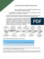Memorandum Sobre Crioablación de Tumores Sólidos y Creación de Unidad de Vacunación Para El Tratamiento de Tumores 2