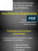 insuficienciasuprarrenal- adison2