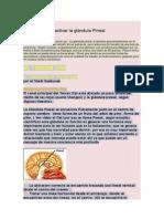 Ejercicios Para Activar La Glándula Pineal