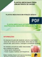 Plantas Medicinais Antissepticas e Cicatrizantes Sadas Em Doencas de Pele