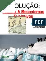 evolução - ideias evolucionistas