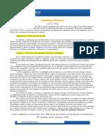 P0001-File-Ficha_Lectura_surgimiento del capitalismo financiero.pdf