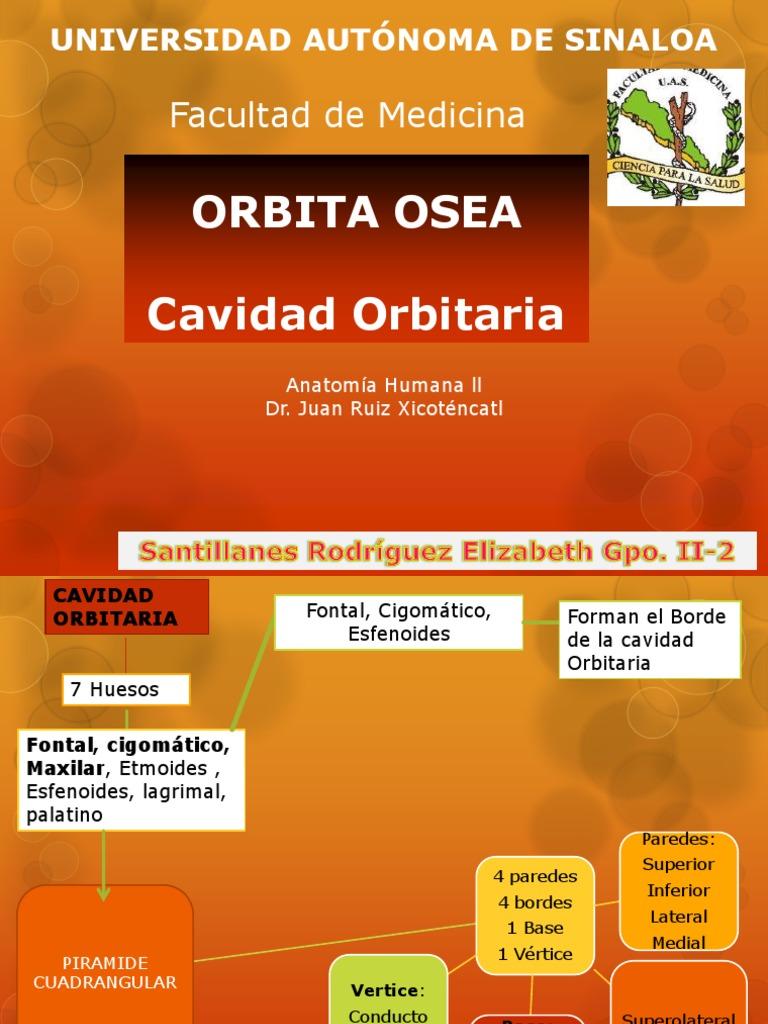 Orbita Osea.pptx,
