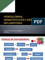 9 Hemoglobina, Hematopoyesis y Respuesta Inflamatoria 06-Feb-14