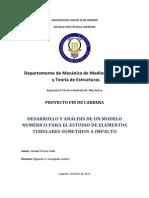 Ismael Torres Vela_pfc