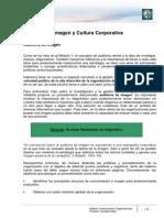 Lectura 9 - Auditoría de Imagen y Cultura Corporativa
