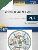 Sistemas de Soporte Al Cliente-SEMANA 1