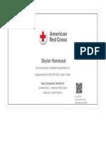 lifeguard certificate