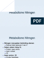 2. Metabolisme Nitrogen