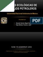 Normas Ecológicas de Trabajos Petroleros_SEG