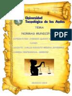 Monografía Municipal