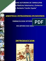 Cirugia Aines Bovinos Def