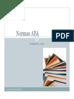 Norma APA Final)