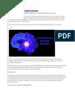 Detoxifierea glandei pineale