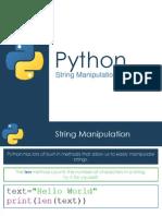 String Manipulation - Python