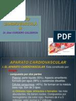 APARATO CARDIOVASCULAR.pptx