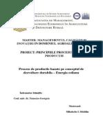 Proiect Principiile Procesului de Productie