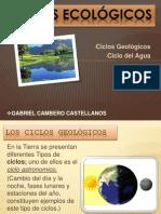 CICLOS_ECOLOGICOSNEW