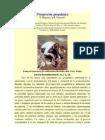 Prospección geoquímica_oyarzun