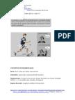03 - Guía Nº3 De Contenido PSU Fisica - Cinemática  I Parte- MRU y MRUV