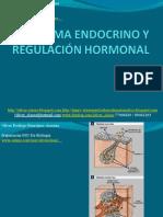 10 - Presentación 10 - Sistema Endocrino