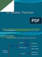 12 - Presentación 12 - Sistema Nervioso