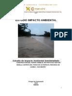 Estudio de Impacto Ambiental Puente