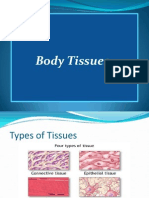 Body Tissues Histology 101